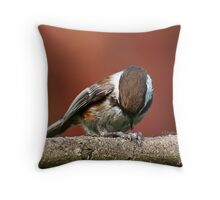 Chestnut-Backed Chickadee Opening a Sunflower Seed Throw Pillow