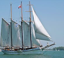 The Beautiful Tall Ship the Empire Sandy by Gerda Grice