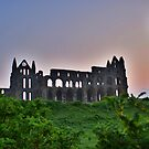 Whitby Abbey At Dawn Light by Sandra Cockayne
