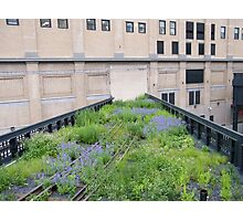 Tracks to Nowhere,High Line, New York City Photographic Print