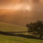 Maglow Mist by johnfinney