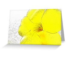 Yellow Bell Buttercup  Greeting Card