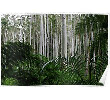 Flooded Gum Forest Poster