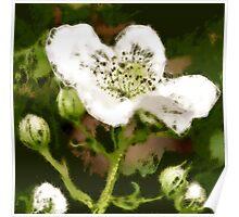 Spring sparkler... ScribblerToo Poster