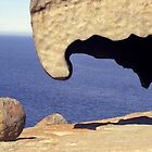 Remarkable Rocks by clareville