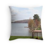Nice Water Front Property Throw Pillow
