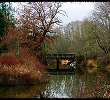 Bridge Over Still Water by Daphne Eze