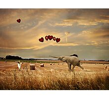 Playing With Balloons.... Photographic Print