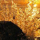 Glass Splash- Cronulla,AU by RIVIERAVISUAL