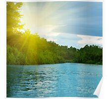 Lake in deep forest Poster