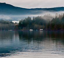 Mist On Shawnigan Lake BC Canada by Daphne Eze