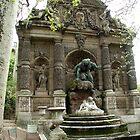 Medici Fountain by Tom  Reynen