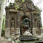 Medici Fountain by Tom  Reynen
