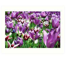Purple heaven blooms Art Print
