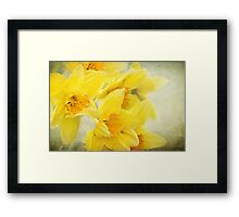 Spring gold Framed Print