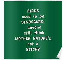 Birds and Dinosaurs Poster