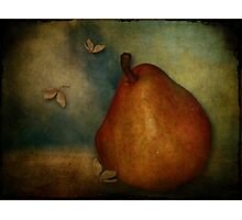 Red Williams Pear - Still Life Photographic Print