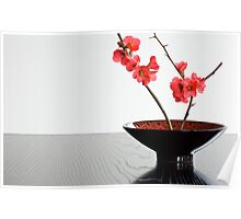 Bowl With Japonica Poster