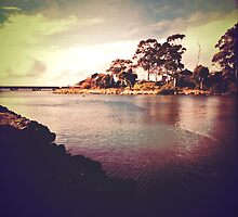 Cam River, Tasmania by Rhana Griffin