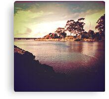 Cam River, Tasmania Canvas Print