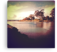 Cam River, Tasmania Canvas Print