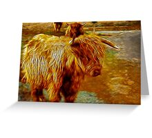 Highland Cattle Greeting Card