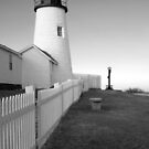 Pemaquid Point Light Mono by Patrick Downey