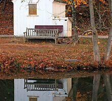 Little House in Fall by Margan  Zajdowicz
