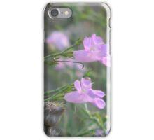 Purple Gerardia and Dried Bee Balm iPhone Case/Skin