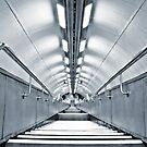 Terminal 5 by Carlos Neto