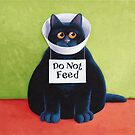 Do Not Feed by vickymount