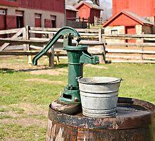 """""""Got Water""""? by Sally Kady"""