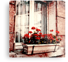 Windows of Paris Metal Print