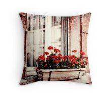 Windows of Paris Throw Pillow