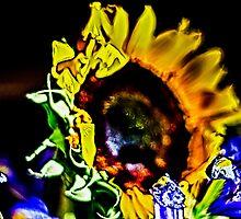 Abstract Sunflower by DBGuinn