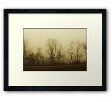 November Guest Framed Print