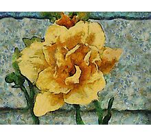 Lovely Flower Photographic Print