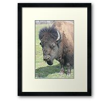 Chief Tatonka Framed Print