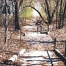 Steps Leading down to Strathcona Park, Ottawa by Shulie1