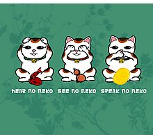 Three Wise and Lucky Neko Photographic Print