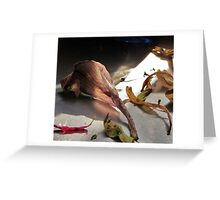 Remnants Greeting Card