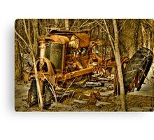 Rusty!!!!!! Canvas Print