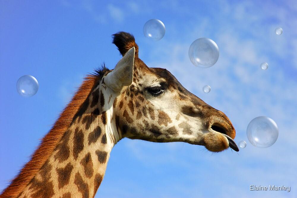 Catch a Bubble by Elaine  Manley