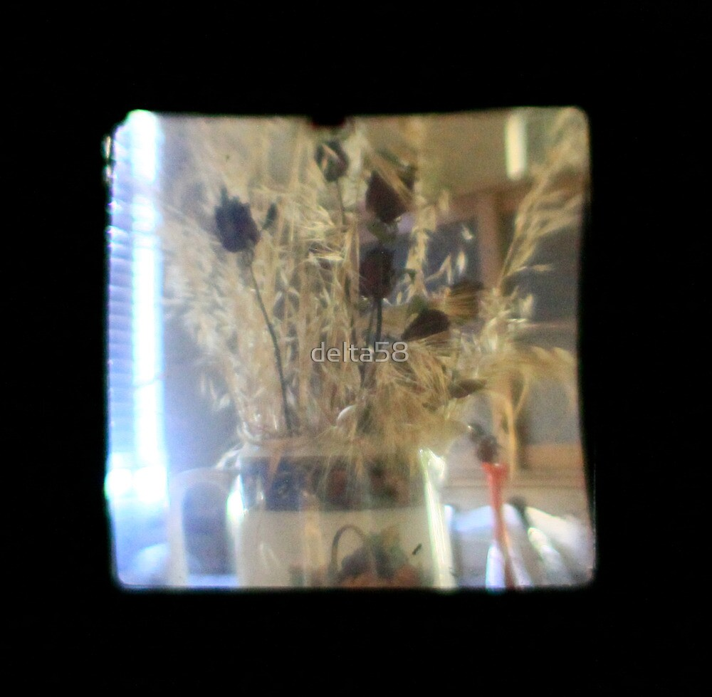 TTV Image ( Through The Viewfinder)#3 by delta58