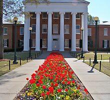 University of Mississippi Lyceum  by Jimmy Durham