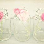 Jars of Spring by jenndiguglielmo