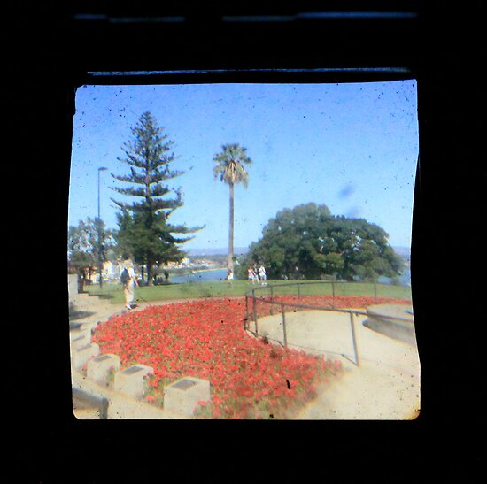 TTV Image ( Through The Viewfinder)#5 by delta58