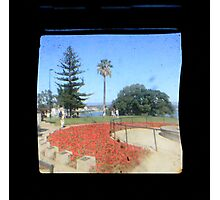 TTV Image ( Through The Viewfinder)#5 Photographic Print