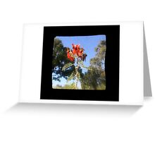 TTV Image ( Through The Viewfinder)#7 Greeting Card