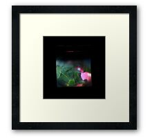 TTV Image ( Through The Viewfinder)#9 Framed Print